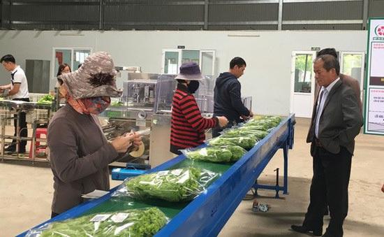 Cả nước có hơn 150 cơ sở chế biến rau quả quy mô công nghiệp