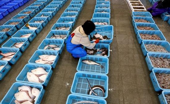 Thực phẩm từ Fukushima được phép nhập khẩu vào Singapore