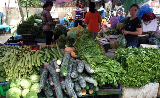 TP.HCM: Giá rau củ quả tại chợ truyền thống ở mức cao