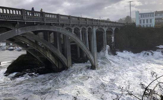 New Zealand: Hàng nghìn cư dân sơ tán do lũ lụt nghiêm trọng