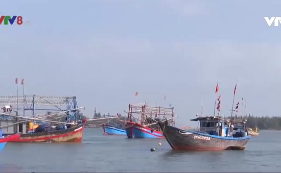 Quảng Nam tìm giải pháp khơi luồng Cửa Đại