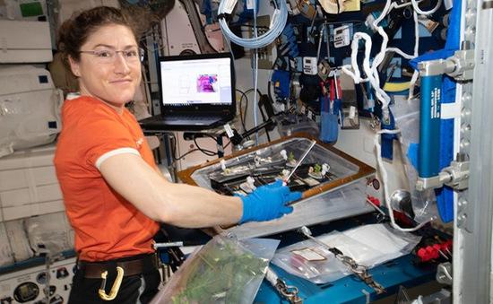 Kỷ lục làm việc trên trạm không gian quốc tế