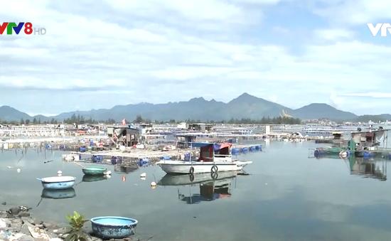 Đà Nẵng tháo dỡ lồng bè không phép tại vịnh Mân Quang