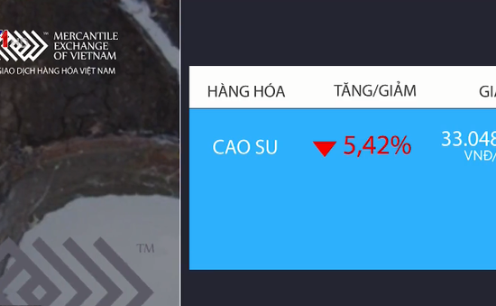 Giá cao su giảm mạnh