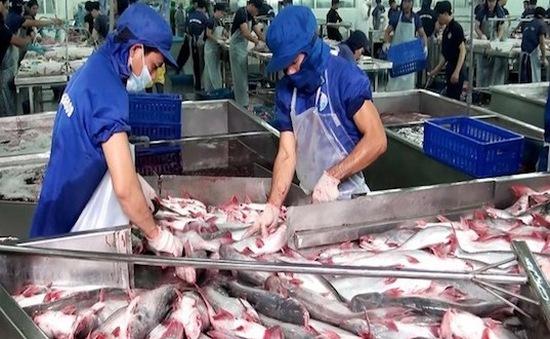 Doanh nghiệp thủy sản sụt giảm 35 – 50% đơn hàng do COVID-19