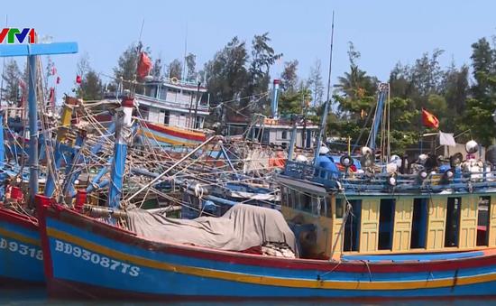 Bình Định xử phạt 4 tàu cá vi phạm vùng biển nước ngoài
