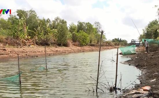Đời sống người dân vùng ngọt hóa bị đảo lộn vì hạn mặn