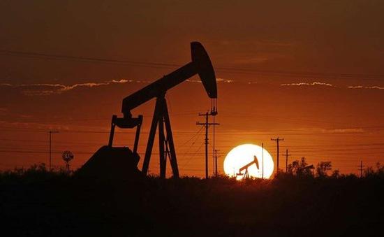 WSJ: Nhiều công ty dầu khí của Mỹ cắt giảm mạnh sản lượng