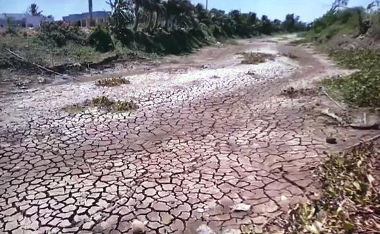 Khẩn cấp ứng phó hạn hán, thiếu nước ở Ninh Thuận