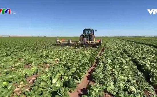 Mỹ cứu trợ ngành nông nghiệp