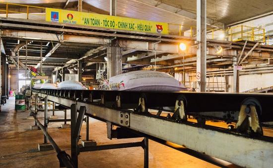 Đảm bảo cung ứng đủ phân bón phục vụ sản xuất vụ Hè Thu