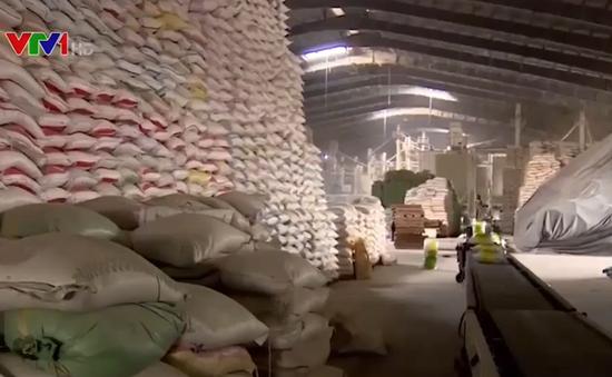 Nhiều bất cập nảy sinh khi áp hạn ngạch ngắn hạn cho hoạt động xuất khẩu gạo