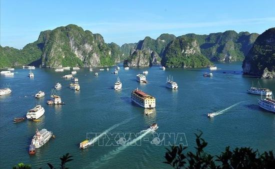 Từ 4/5, tổ chức đón du khách trở lại tại vịnh Hạ Long