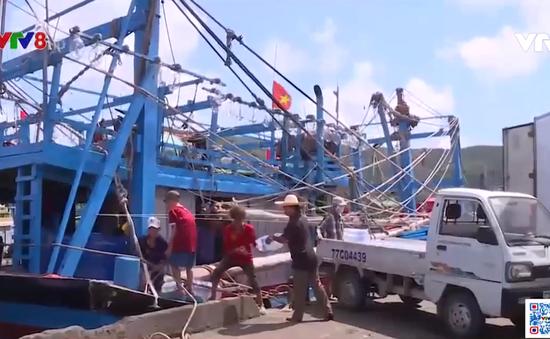 Ngư dân bám biển, giữ ngư trường truyền thống