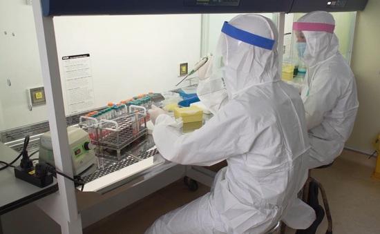 Hà Nội miễn giảm giá điện cho cơ sở phòng chống dịch COVID-19