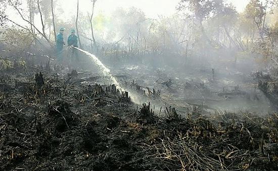 Hàng chục nghìn ha rừng Cà Mau trong tình trạng báo động đỏ về cháy rừng
