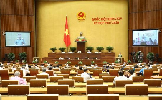 Tổ chức thí điểm mô hình chính quyền đô thị một cấp tại Đà Nẵng