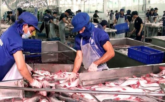 Thuế chống bán phá giá cá tra, basa vào Mỹ giảm