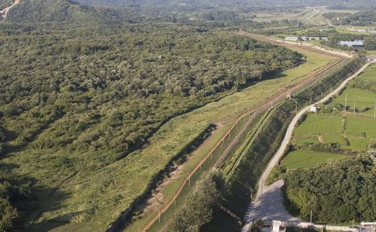 Bộ Tư lệnh LHQ điều tra vụ nổ súng ở biên giới giữa hai miền Triều Tiên