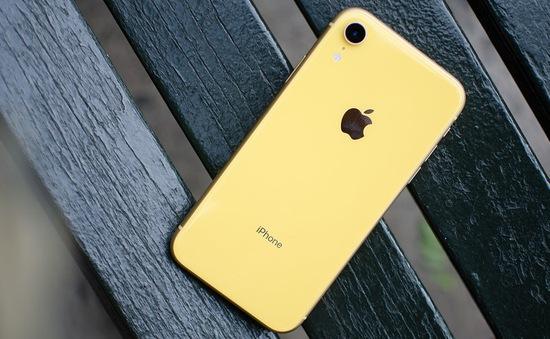 Apple bán iPhone XR với giá chỉ 499 USD