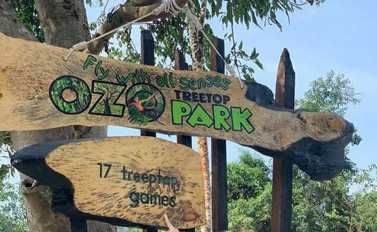 Khám phá Ozo - Công viên trò chơi trên cây lớn nhất Việt Nam