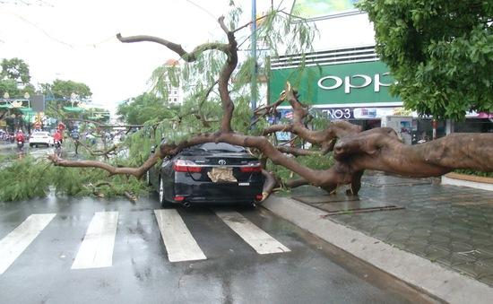 Nguy cơ tai nạn do dông lốc bất thường