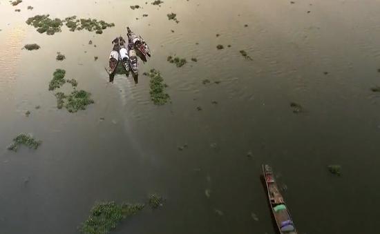 Bảo tồn thiên nhiên hệ đầm phá đất ngập nước Tam Giang - Cầu Hai
