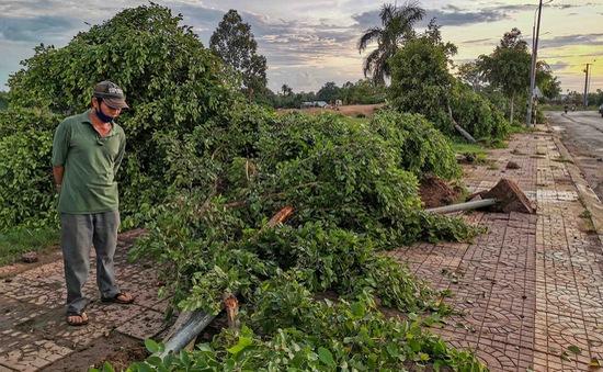 Dông lốc cuốn bay mái nhà, quật ngã loạt cây xanh
