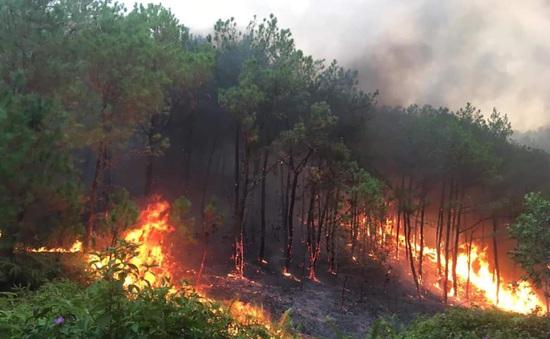 Trắng đêm dập lửa tại nhiều điểm cháy rừng ở Nghệ An, Hà Tĩnh