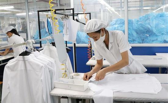 INFOGRAPHIC: Quý II/2020, 2,4 triệu lao động bị mất việc làm do dịch COVID-19