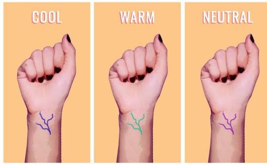 Da của bạn ấm, lạnh hay trung tính?