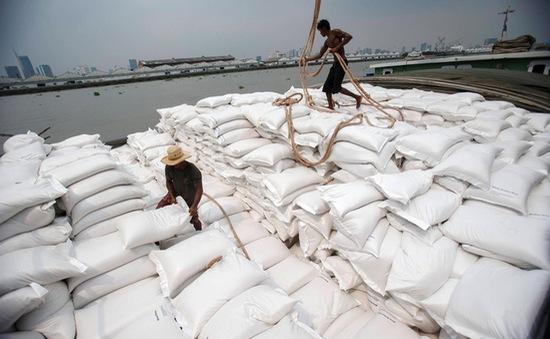 Việt Nam sắp soán ngôi xuất khẩu gạo của Thái Lan