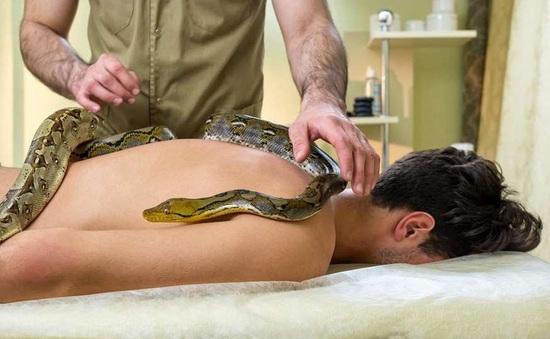 Massage lửa, thả rắn trên lưng,... 6 spa kỳ dị nhất thế giới ít ai dám thử