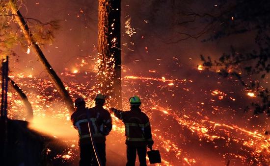 Hỏa hoạn thiêu rụi 40 ha rừng thông ở Pháp, nhiều người phải sơ tán