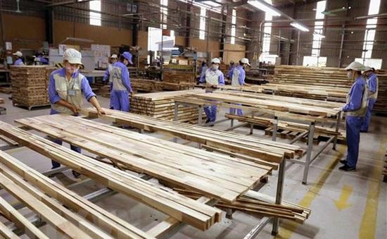 Đột ngột bị áp thuế 25%, gỗ ghép thanh ùn tắc tại nhiều cảng biển