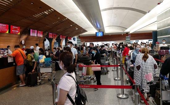 Hơn 240 công dân Việt Nam từ Đài Loan (Trung Quốc) về nước an toàn