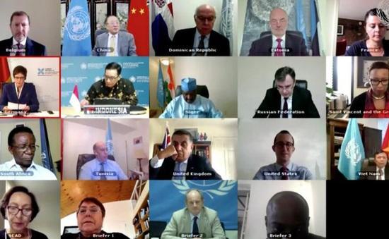 """HĐBA họp trực tuyến về """"Hoạt động hòa bình và Quyền con người"""""""