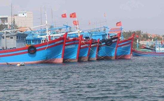 Quảng Ninh tạm ngừng cấp phép tàu từ 0h ngày 2/8
