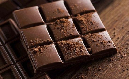 Từ cây ca cao tới những thanh sô-cô-la hảo hạng