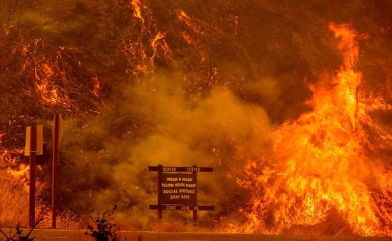Mỹ: Triệu chứng COVID-19 nghiêm trọng hơn do khói cháy rừng