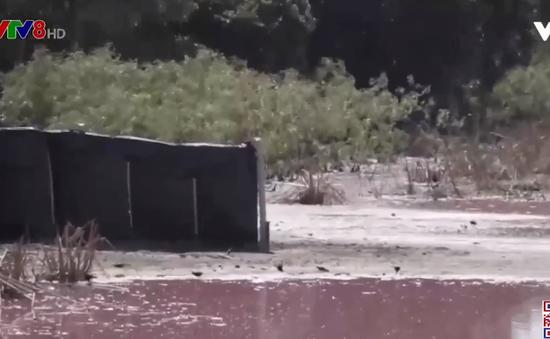 Paraguay: Sông biến thành màu tím do ô nhiễm nhiều tháng