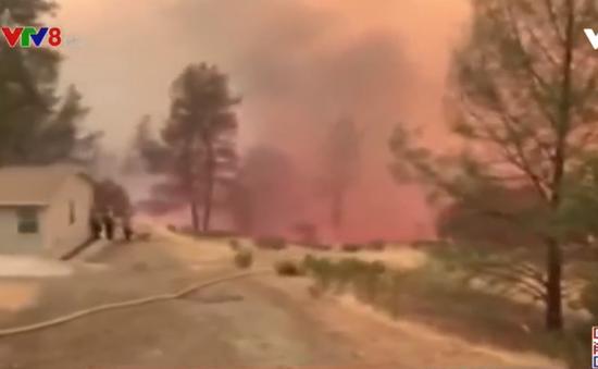 Tổng thống Trump tuyên bố tình trạng thảm họa do cháy rừng ở California
