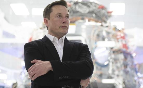 Tỷ phú Elon Musk ôm mộng hợp nhất trí tuệ nhân tạo với trí não con người
