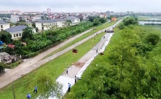 Mưa lớn kéo dài, nhiều tuyến đê hư hỏng, nứt dài hàng trăm mét