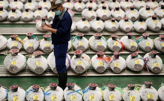"""Chợ cá lớn nhất thế giới tại Nhật Bản """"chật vật"""" tồn tại giữa đại dịch"""