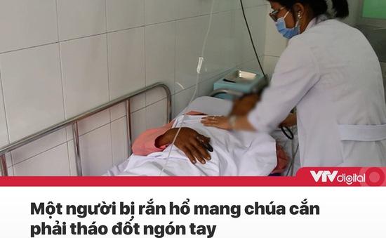 Tin nóng đầu ngày 29/9: Tháo đốt ngón tay vì bị rắn hổ mang chúa cắn
