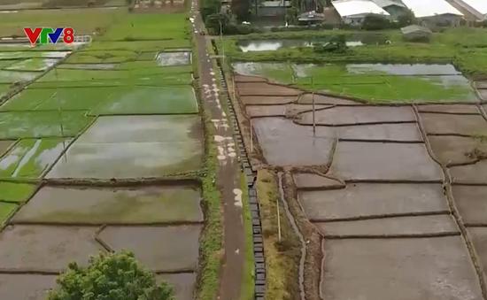 Đắk Lắk: Chú trọng thực hiện tiêu chí thủy lợi trong xây dựng nông thôn mới
