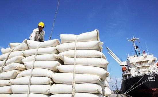 Bộ Tài chính lý giải nguyên nhân cần xếp hạng nhà thầu cung cấp gạo dự trữ quốc gia