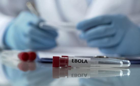 Thành lập kho dự trữ khẩn cấp toàn cầu vaccine ngừa bệnh do virus Ebola gây ra