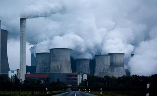 Mua bán khí carbon - Cú hích thúc đẩy bảo vệ rừng, phát triển kinh tế bền vững